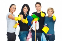 Which Cleaning Products Are Useful In The Home?